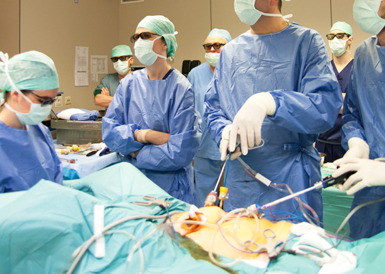 Laparoscopic Surgery Procedures